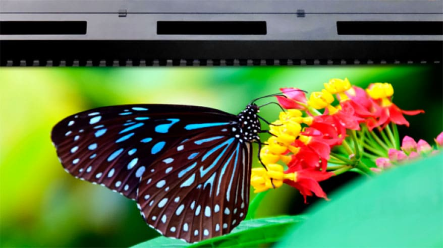Pixis Wide-Format Printers from Paradigm
