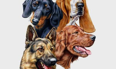 Great Dane Graphics Adds Dog Breed Designs