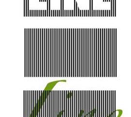 859-3.jpg