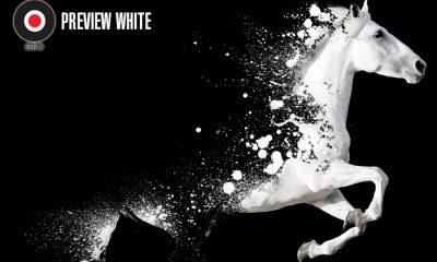 Virus_Geo_Preview_White